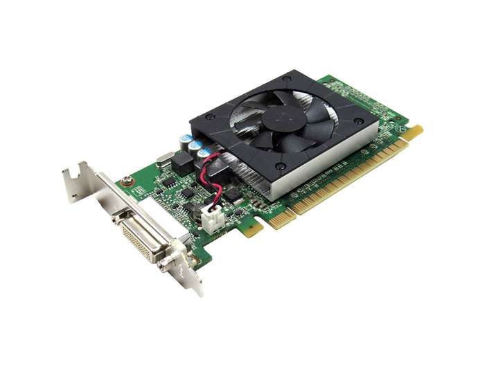 VGA 1GB GEFORCE 605 DMS59/DISPLAYPORT LP